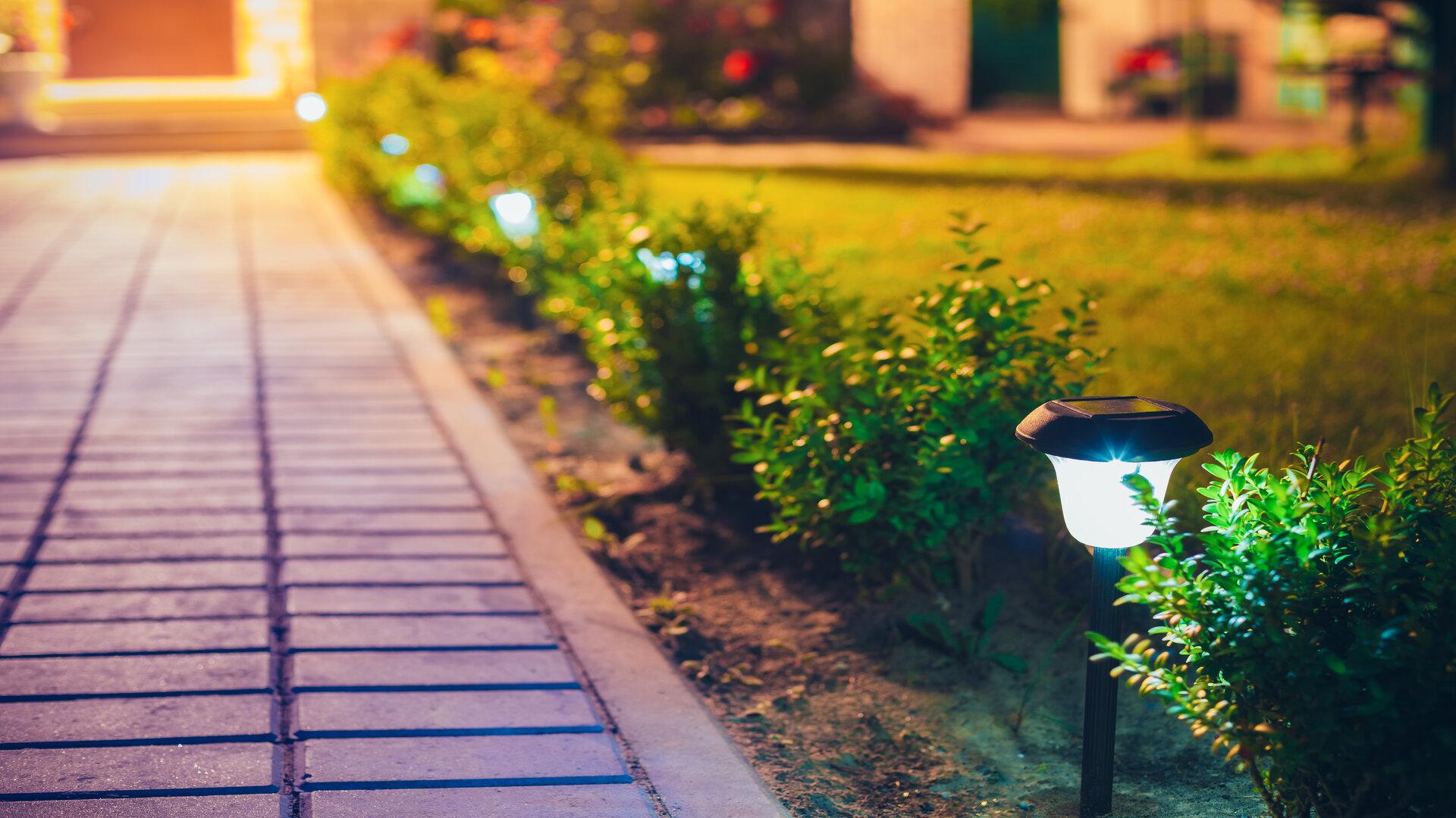 Illuminer son jardin pour révéler sa beauté la nuit : comment s'y prendre ?