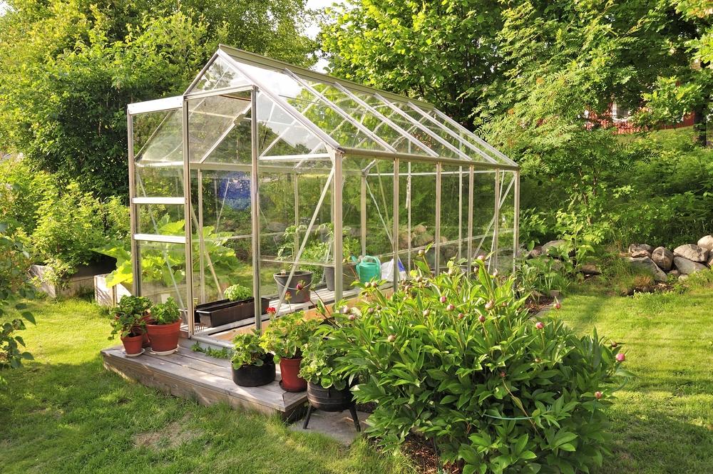 Comment choisir une serre pour le jardin